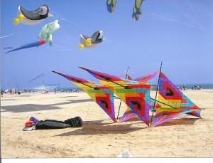 aquiloni in spiaggia, da http://www.bebcervia.it/notizie.asp?Z=0&L=2